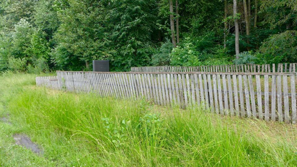 Site of a Holocaust mass grave in Romanow, Ukraine